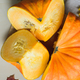 fresh harvest of orange pumpkin - PhotoDune Item for Sale