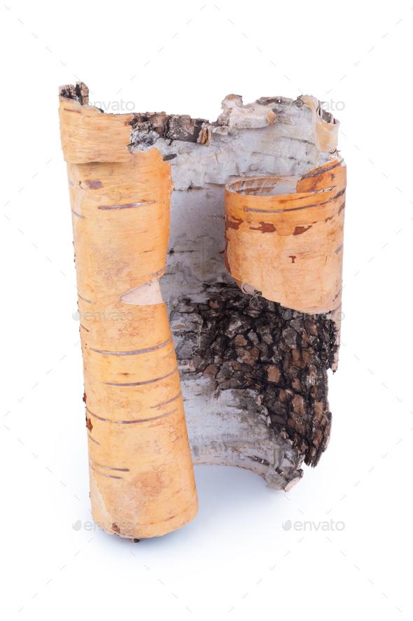 Birch bark on white background - Stock Photo - Images