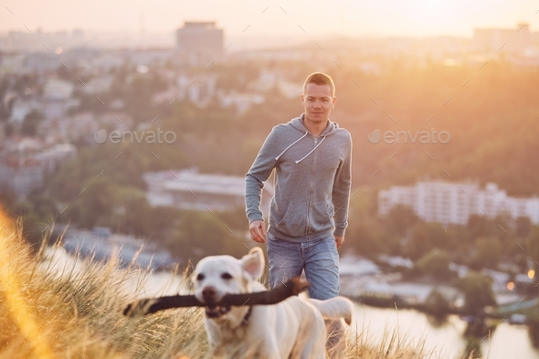 Morning walk with dog - Stock Photo - Images