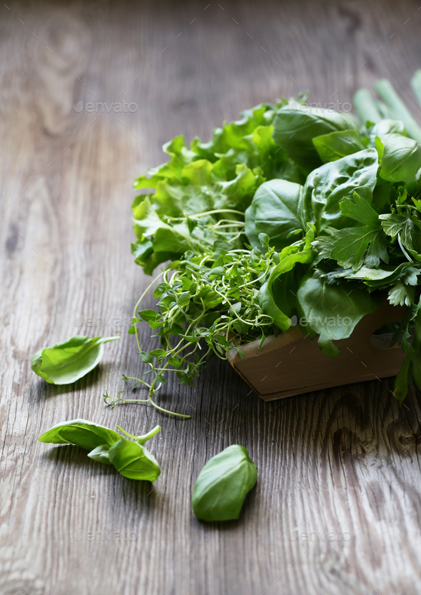 Fragrant Herbs Stock Photo by Dream79 | PhotoDune