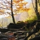 The Mountain River in Autumn Forest at Amazing Sunny Day - VideoHive Item for Sale