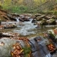 The Mountain River with Waterfall in Autumn Forest at Amazing Sunny Day - VideoHive Item for Sale