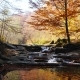 The Mountain River with Waterfall in Autumn Forest - VideoHive Item for Sale