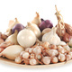 onion, shallots and garlic - PhotoDune Item for Sale