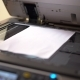 Busy Woman Making Document Copies in Office. Pretty Secretary at Her Job. Hands with Papers on the - VideoHive Item for Sale