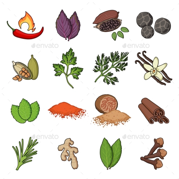 Herb and Spices Cartoon Icons - Food Objects