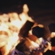 Two Marshmallows on Sticks Roast Over a Fire - VideoHive Item for Sale