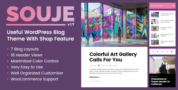 Souje - Personal WordPress Blog Theme - Blog / Magazine WordPress