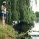 Young Girl in Panama Feeds Swans on the Lake in the Summer Park - VideoHive Item for Sale
