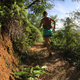 Female trail runner running in sunny forest - PhotoDune Item for Sale