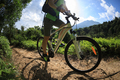 Female cyclist riding mountain bike in sunny forest  - PhotoDune Item for Sale