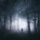 Man in dark forest having surreal experience - PhotoDune Item for Sale