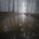 Lake in surreal forest with fog - PhotoDune Item for Sale