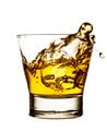 Whiskey - PhotoDune Item for Sale