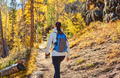 Tourist hiking in aspen grove at autumn - PhotoDune Item for Sale