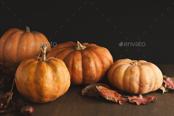 Beautiful pumpkins with leaves and chestnuts on black background - Stock Photo - Images