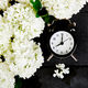 Black alarm clock and white flowers on black background. - PhotoDune Item for Sale