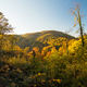 Colourful autumn landscape view - PhotoDune Item for Sale