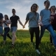 Group of Friends Go Happily Together in the Grass - VideoHive Item for Sale
