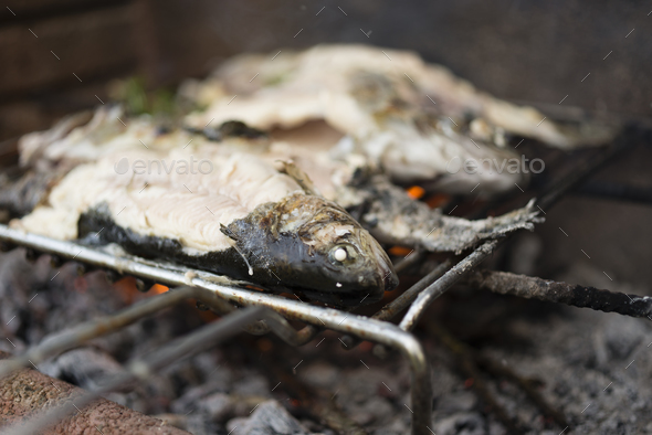 Trout fished on Italian river. - Stock Photo - Images