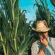 Portrait of male farmer in corn field - PhotoDune Item for Sale
