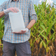 Farmer holding pesticide chemical jug in cornfield - PhotoDune Item for Sale