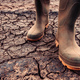 Farmer in rubber boots standing on dry soil ground - PhotoDune Item for Sale