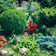 Neat flowerbed in a home garden. - PhotoDune Item for Sale