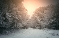 Sunset light over winter landscape with road - PhotoDune Item for Sale