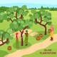 Olives Harvesting Isometric Poster - GraphicRiver Item for Sale