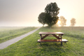 morning sunshine over countryside with table and benches - PhotoDune Item for Sale