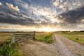 beautiful sunset in Dutch farmland - PhotoDune Item for Sale