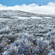 Landscape with hoarfrost - PhotoDune Item for Sale