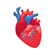 Heart - GraphicRiver Item for Sale