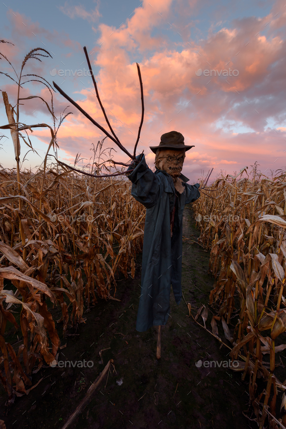 Scary scarecrow in a hat - Stock Photo - Images