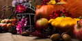 Fall decor with yellow and orange squash and acorn - PhotoDune Item for Sale