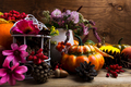 Fall arrangement with Turban squash, pink and purple flowers - PhotoDune Item for Sale
