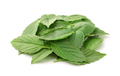 Heap of fresh basil leaves - PhotoDune Item for Sale