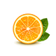 Juicy Orange with Green Leaves - GraphicRiver Item for Sale
