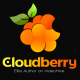 Cloudberry_Motion