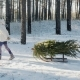A Little Girl Is Carrying a Christmas Tree on a Wooden Sled. Goes Through the Snow-covered Forest - VideoHive Item for Sale