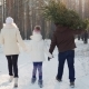A Happy Family with a Child Is Walking Along a Snow-covered Forest, the Father Is Carrying - VideoHive Item for Sale