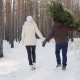 A Young Couple Is Walking Along a Snow-covered Forest, a Man Is Carrying a Christmas Tree - VideoHive Item for Sale