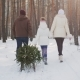 A Married Couple with a Child Walks Through a Snow-covered Forest, a Girl Is Dragging a Sled with a - VideoHive Item for Sale