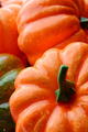 Group of orange and green pumpkins - PhotoDune Item for Sale
