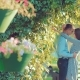 Couple in Love Cuddling in a Park - VideoHive Item for Sale