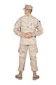 Soldier in parade rest position back view shoot - PhotoDune Item for Sale