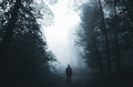 Man silhouette in haunted forest at night - PhotoDune Item for Sale