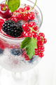 Cold berry lemonade in a cocktail glass close-up on a white back - PhotoDune Item for Sale