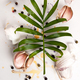 Garlic cloves and a leaf of a tropical plant lie on a white text - PhotoDune Item for Sale
